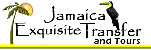 Contact us http://jamaicaexquisitetours.com  for all you transfers from Sangster International Airport Montego bay (MBJ), Or Norman Manley International Airport in Kingston, To Ocho Rios Negril, Runaway Bay, Tryall/Round Hill, White House, & Kingston