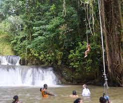 Y.S Falls Tour From Montego Bay