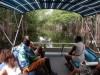 Montego Bay cruise ship terminal to Black River Safari