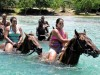 Braco Horse Back Riding Tour