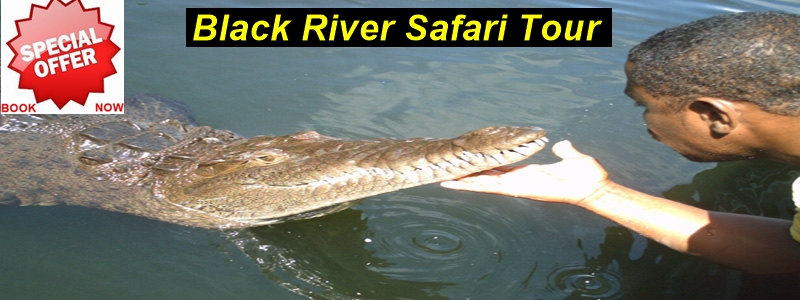 black-river-safari-photo-shop-1.jpg