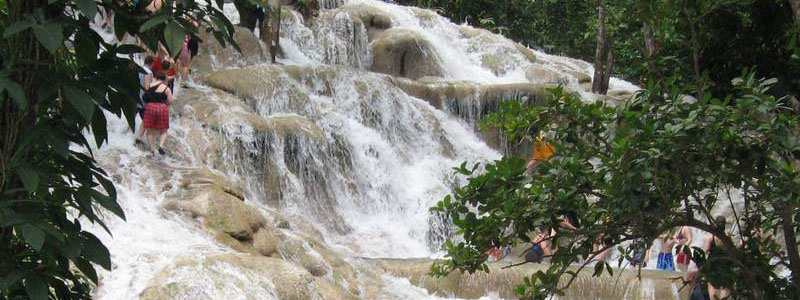 Our customized tours and excursion, from your hotel or cruise ship port will take you to various attraction on the Island to include, Dunns River Falls, Dolphin Cove, Negril 7 Mile Beach, Mystic Mountain, Zipline Canopy, Rosehall Great House, Martha Brae Rafting and the Aquasol Beach and fun park..