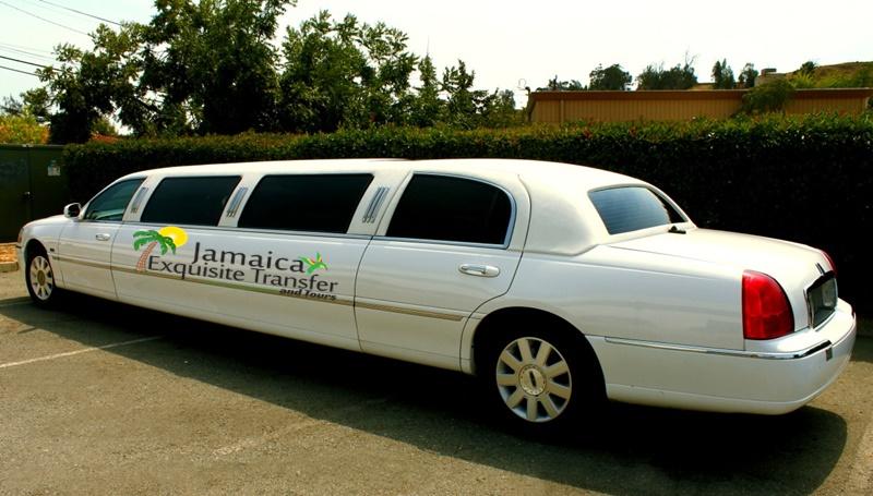 8 seat passengers VIP limousine