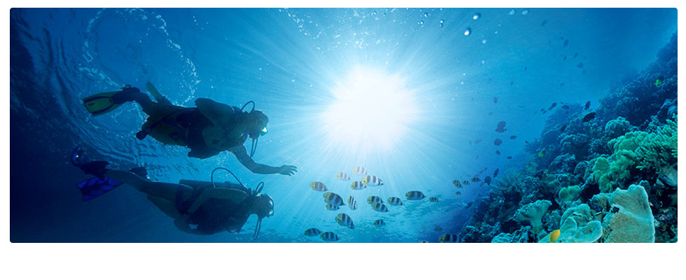 Scuba diving tour in Jamaica