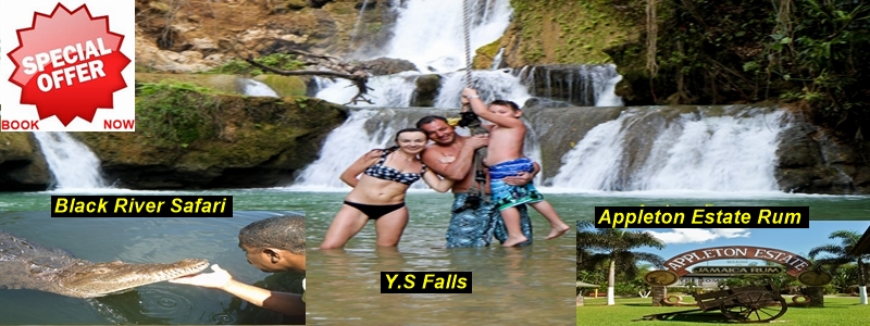 y.-s-fall-black-river-appleton-estae-rum-tour.jpg